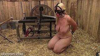 Red cow milker